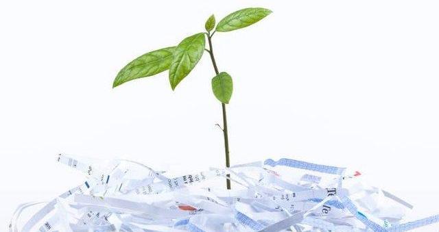 Ανακυκλώνουμε περίπου 5 τόνους χαρτί ετησίως